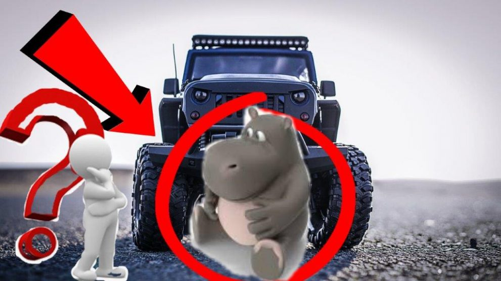 carsoundeffect.com-Car-Vs-Hippopotamus-Rubber-Toy-Sound-Effect-car-crushing-things-sound-effects-images